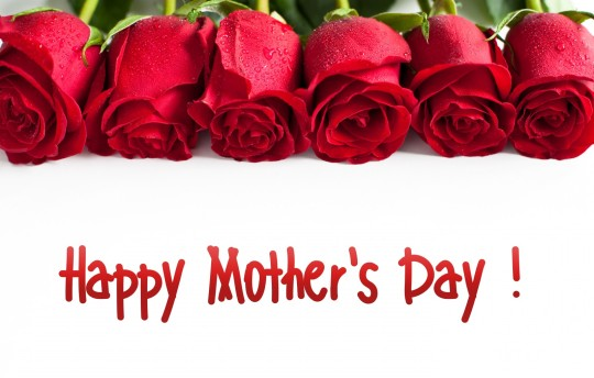 Sentence-Happy-Mothers-Day-with-Red-roses